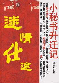 小秘书升迁记:迷情仕途(全本)